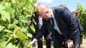 Le ministre de l'Agriculture Stéphane Travert, le 4 août 2017 en visite à Galgon (Gironde).