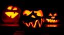Quelques citrouilles d'Halloween  (Photo d'illustration)