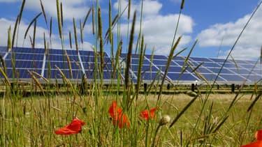 Mesure promise lors de la 4e conférence environnementale, l'émission d'obligations vertes sera effective dès 2017. (image d'illustration)