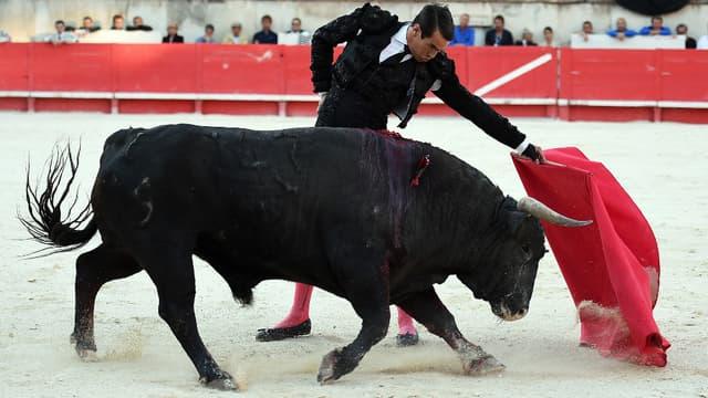 Le matador espagnol Jose Marie Manzanares lors d'une corrida à Nîmes le 20 septembre.