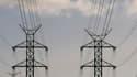 L'Allemagne est venue en aide à la France la semaine dernière en lui fournissant massivement de l'électricité et a fait taire du même coup les critiques lui reprochant l'arrêt brutal de ses huit réacteurs nucléaires après la catastrophe de Fukushima. /Pho