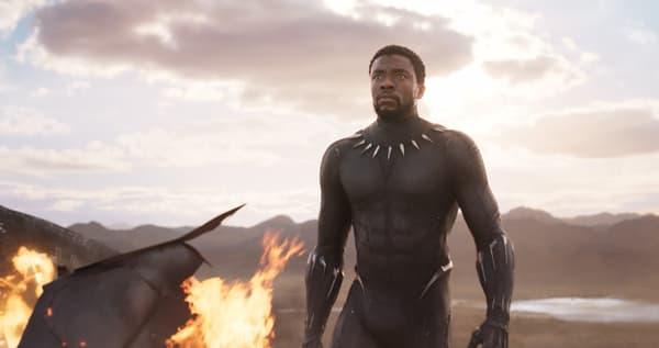 Chadwick Boseman dans Black Panther