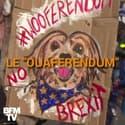 """""""Ouaferendum"""", des chiens défilent contre le Brexit"""