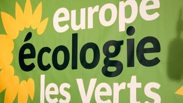 Europe Ecologie-Les Verts se divise sur la forme de son opposition au Traité européen