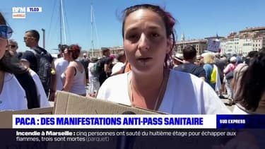 Provence-Alpes-Côte d'Azur: manifestations contre l'extension du pass sanitaire ce samedi