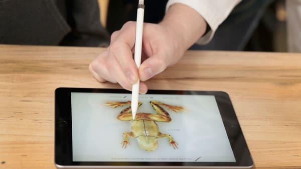 Froggipedia avait été utilisée pour la présentation des iPad le 27 mars 2018