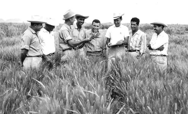 En exportant au Mexique et en Inde le modèle de l'agriculture intensive de la révolution verte, l'agronome Norman Borlaug (prix Nobel de la paix 1970) aurait permis de sauver 1 milliard d'êtres humains.