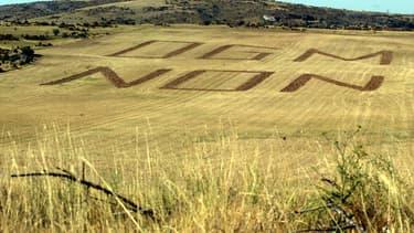Pour François Hollande, pas question d'autoriser la culture du maïs transgénique MON 810 de Monsanto en France.