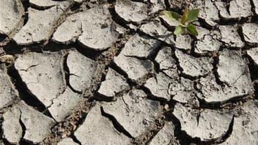 Des sols asséchés (Photo d'illustration).