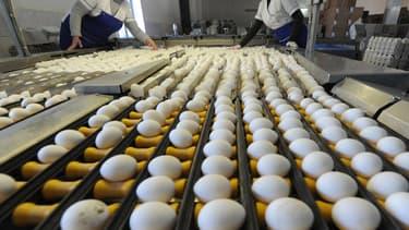 Albert Heijn, la chaîne de supermarchés la plus importante des Pays-Bas, a stoppé la commercialisation de 14 sortes d'oeufs, suivant les indications de l'organisme néerlandais chargé de la sécurité alimentaire et sanitaire NVWA