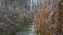 Chutes de neige samedi 27 octobre à Boisney, dans l'Eure