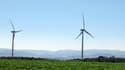 """Le vote de la loi """"sur la transition énergétique"""", mesure phare du quinquennat de François Hollande a lieu ce mercredi 22 juillet. (image d'illustration)."""