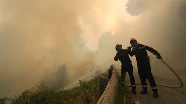 3.000 hectares de végétation ont été détruits en Corse.