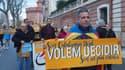 """Un manifestant lors d'un rassemblement pour renommer l'Occitanie """"Pays Catalan"""", le 5 novembre 2016 à Perpignan."""