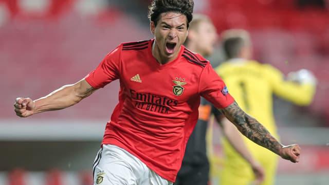 Darwin Nunez - Benfica