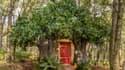 La maison de Winnie l'Ourson est à louer sur Airbnb.