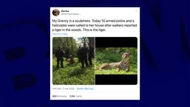 Une dizaine de policiers sont intervenus pour ce qui s'est révélé être une sculpture.