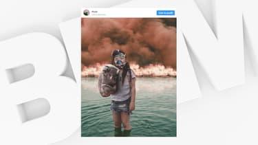La (fausse) photo d'une fillette et d'un koala a choqué les internautes