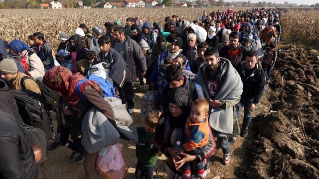 Des réfugiés en Slovénie après avoir traversé la frontière croate, le 26 octobre 2015