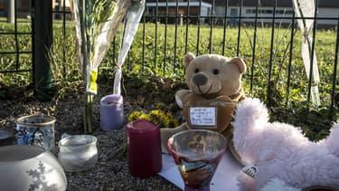 Plusieurs hommages ont été rendus au petit Mathias, 9 ans, mort d'une allergie jeudi après un repas à la cantine, dans une école de Jujurieux.