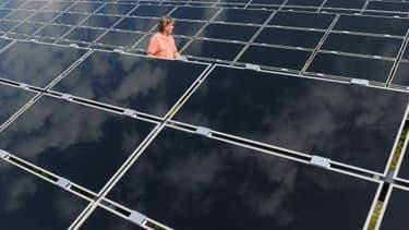 C'est dans le solaire que le nombre d'emplois directs a le plus reculé depuis 2010.