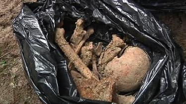 Des ossements de Poilus ont été découverts en forêt dans la Meuse.