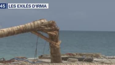 Les ravages d'Irma