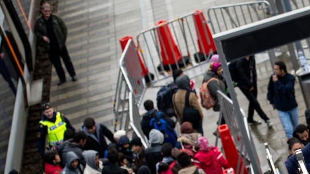 Des réfugiés venus de Suède arrivent au Danemark