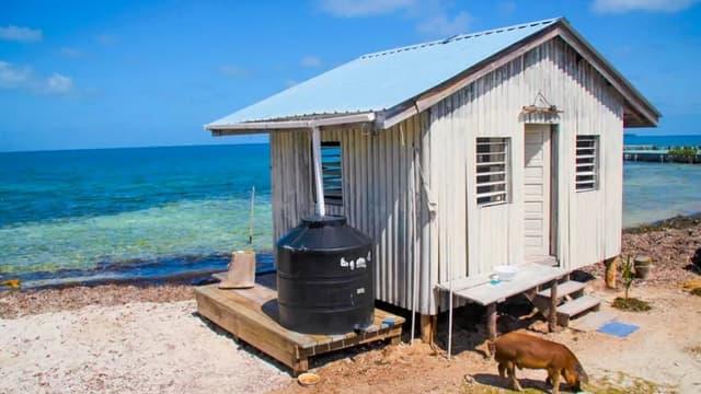 Une île est à vendre au Belize.
