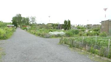 L'homme de 30 ans a atterri dans ces jardins de la commune de Bondues