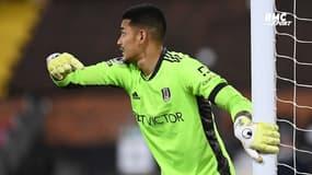 """Fulham : """"On est encore là"""", rappelle Areola"""