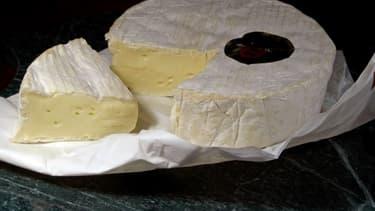"""A partir de 2021, tout AOP """"de Normandie"""" pourra être au lait pasteurisé, mais il devra être fait avec au moins 30% de lait de vaches de Normandie nourries à l'herbe."""