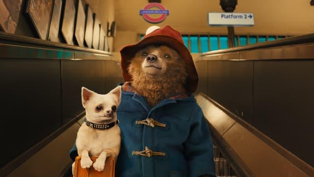 Paddington est apparu à l'origine dans les livres pour enfants de l'auteur britannique Michael Bond