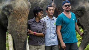 Leonardo DiCaprio en Indonésie en mars 2016