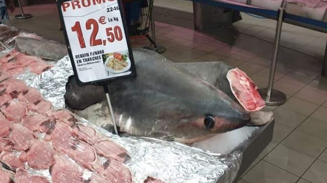 Le requin-renard vendu il y a quelques jours dans l'Intermarché d'Argelès.