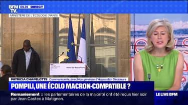 Pompili, une écolo Macron-compatible ? - 07/07