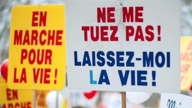 Manifestation contre l'avortement à Paris, en 2012 (illustration)