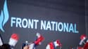 Des drapeaux agités par des militants du Front national lors d'un meeting le 15 septembre 2013 à Marseille