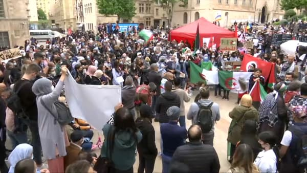 Des manifestants pro-Palestine rassemblés à Marseille, samedi 15 mai 2021