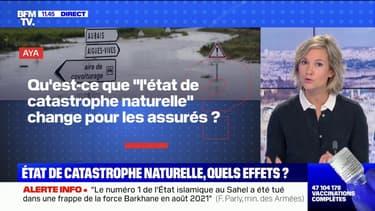 """Qu'est-ce que """"l'état de catastrophe naturelle"""" change pour les assurés ? BFMTV répond à vos questions"""