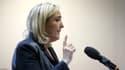 Marine Le Pen en meeting le 1er février 2014.