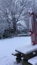 Lozère : un jardin entièrement sous la neige à Saint-Germain-du-Teil - Témoins BFMTV