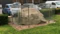 A Féchain dans le Nord, un caillou datant de la Préhistoire empêche la municipalité de réaliser des travaux.