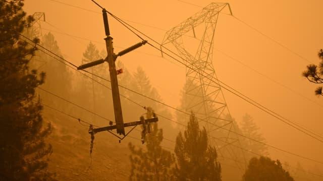 Un poteau électrique dans le comté de Plumas, en Californie (États-Unis), le 25 juillet 2021.