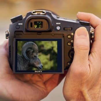 -60% les caméscopes et appareils photo Sony