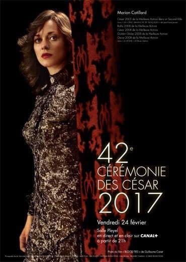 "Marion Cotillard dans ""Blood ties"""