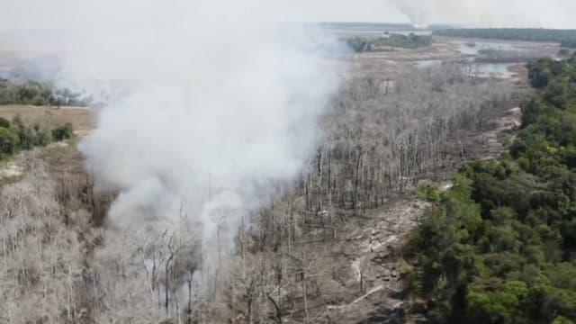 Avec des seaux et des jets d'eau, les habitants luttent contre un incendie qui fait rage dans la forêt amazonienne brésilienne près des fermes de la ville de Sinop, qu'ils affirment être un incendie criminel, tandis que l'administration du président d'extrême droite Jair Bolsonaro est sous pression pour mettre fin à la déforestation et aux incendies de forêt en Amazonie.
