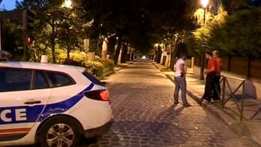 C'est près de cette allée, dans un coin isolé du parc de la Poudrerie à Sevran, que la jeune femme a été sauvagement poignardée lundi soir.
