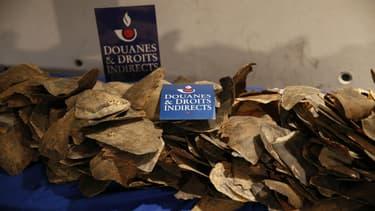 Les douaniers ont saisi 500 kg d'écailles de tortues à Roissy.