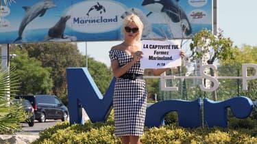 Pamela Anderson manifeste devant Marineland à Antibes, le 22 août 2017